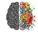 brain-2062049_960_720